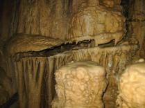 gran fractura en columna