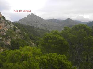 vista desde el Puig d´en Corso