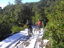 Comuna nevada