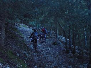 ¡oscuro bosque...!