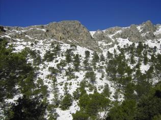 Serra des Teixos