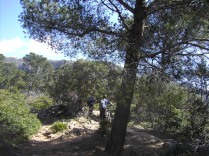 a la Torre Cala en Basset