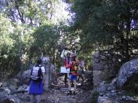 bosc de Monnàber