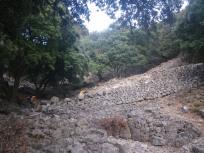 el Cami des Caragol