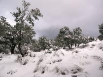 muchísima nieve por todo