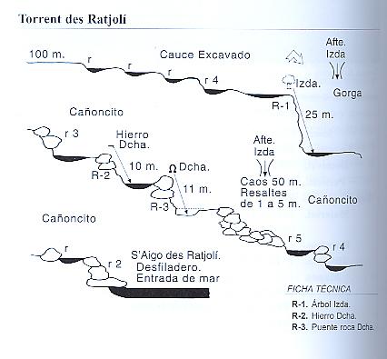 topo torrente Ratjoli