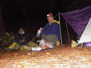 cena nocturna