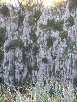 la flecha indica dónde está la maroma en el lado opuesto del cañón
