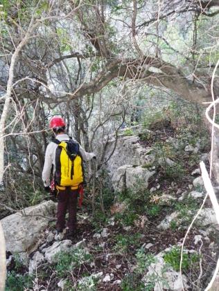 descenso entre selva
