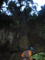 Descenso inicial por el árbol
