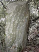 Dolmen en el bosque