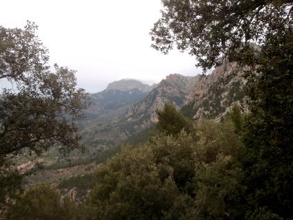 vista del Puig Migdia