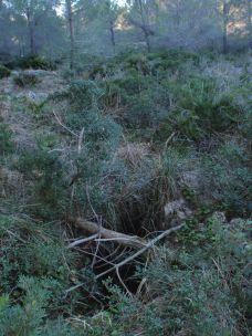cubierto de ramas para evitar caídas de los animales