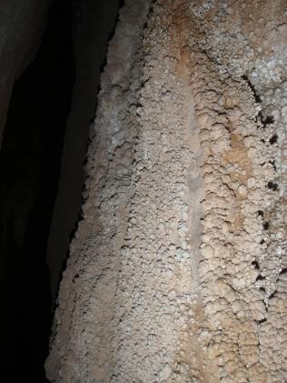"""paredes llenas de formaciones de """"coliflor"""""""