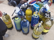 11 botellas