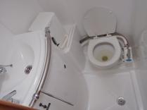 el baño-aseo. Pequeño pero muy práctico