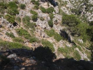 descenso por el cañón Colorao
