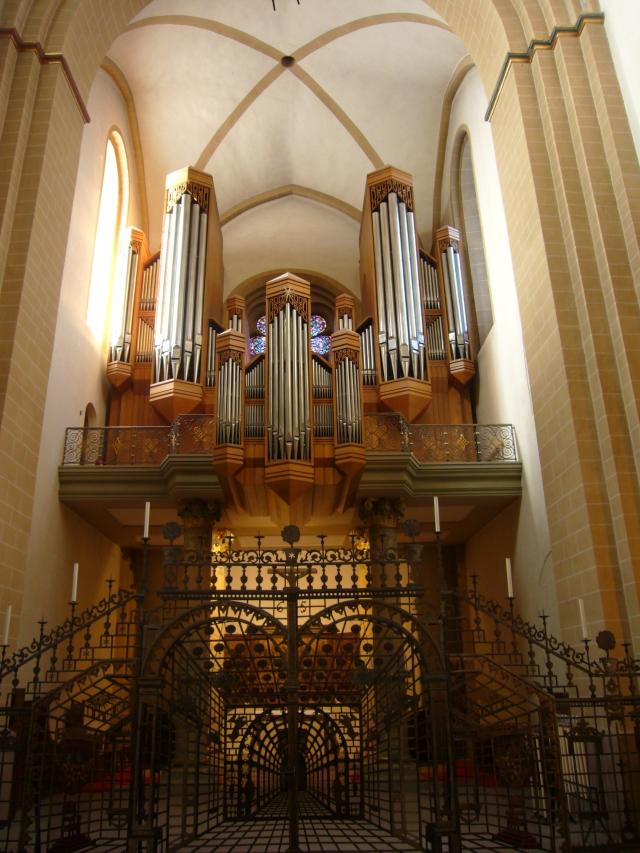 fantástico órgano