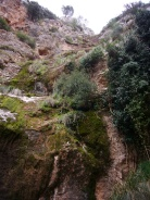 Vista del torrente.