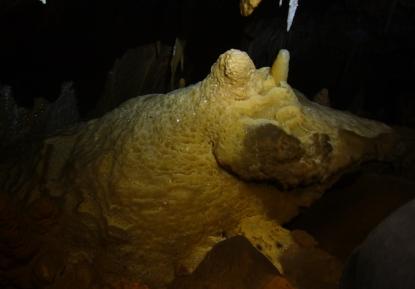 Cova de can Sión