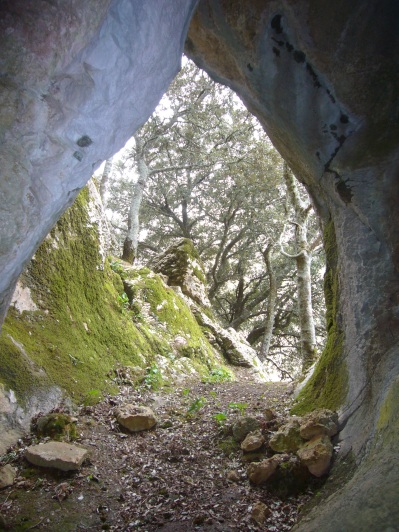 Cova de son Torrella