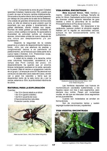 3-Cova Raminfort-01 Rafael Minguillón