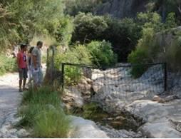 http://www.diariodemallorca.es/part-forana/2015/05/23/cami-coanegra-excluido-ruta-pedra/1025363.html
