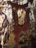 Cova de ses Arrels. Porto Cristo. foto: Rafael Minguillón