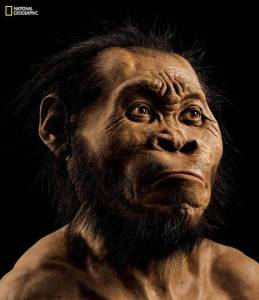 Homo Naledi National Geografic